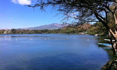 Addis Ababa City Tour and Lake Wonchi